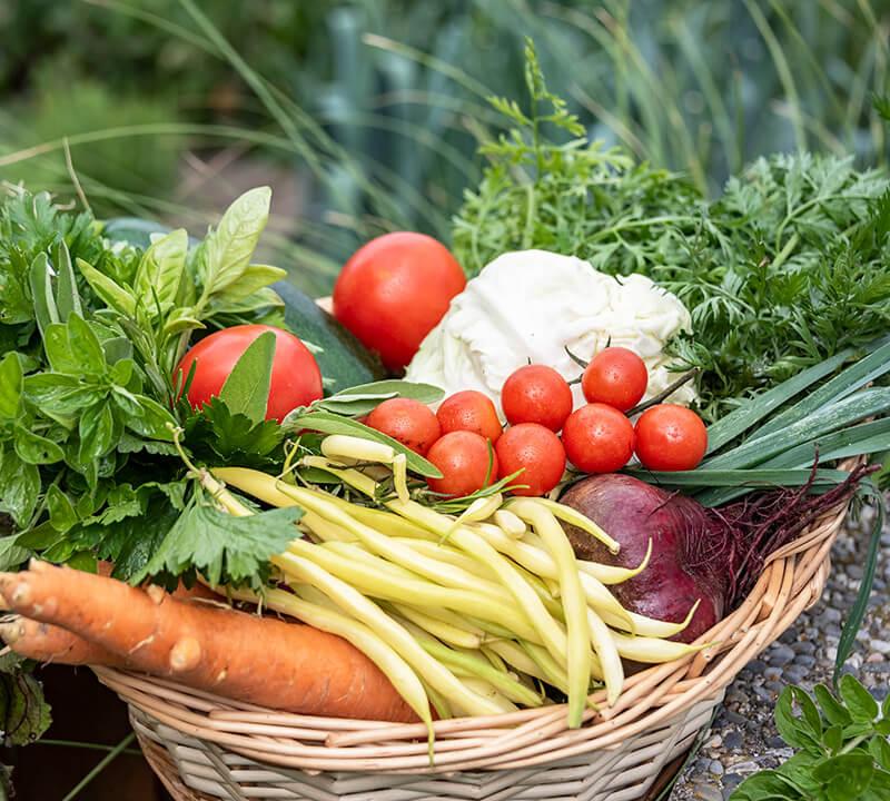 Garten-Produkte