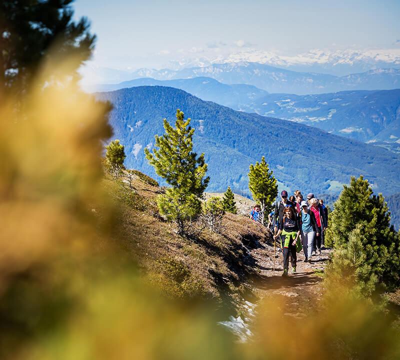 Wanderparadies-Dolomiten